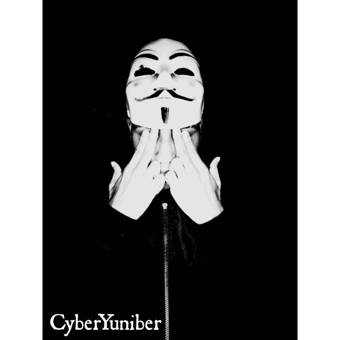 CyberYuniber, el joven que pudo hackear masivas cuentas de Netflix